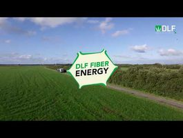 DLF Fiber Energy