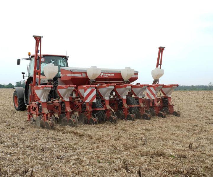 Kukorica tőszámkísérlet vetése no-till körülmények között
