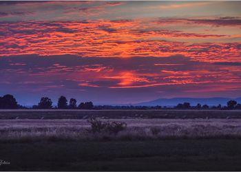 mezőségi fotó naplemente