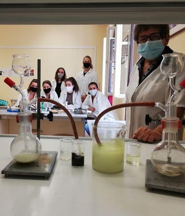 Online kémia fakultációs órák a Líceumban
