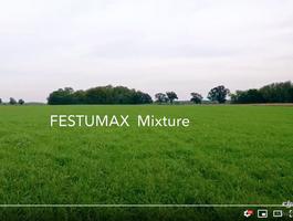Festumax 2020 őszi vetés