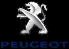 Peugeot fejegységek