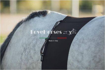OLDALVÉDŐ LOVE HORSES