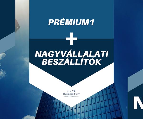 Prémium 1 Klub + Nagyvállalati Beszállítók » online üzleti találkozó