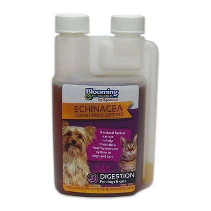 EQUIMINS ECHINACEA-Kasvirág immunerősítő oldat kutyáknak és macskáknak 250 ml