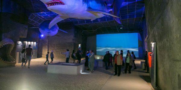 Paleontological presentation