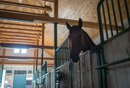 A home for horses and riders
