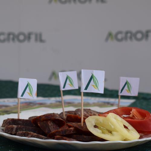 Agronomic Design 2019 - Tiszagyenda