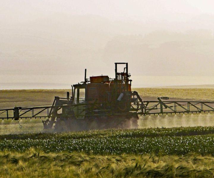 Villám mezőgazdaság…