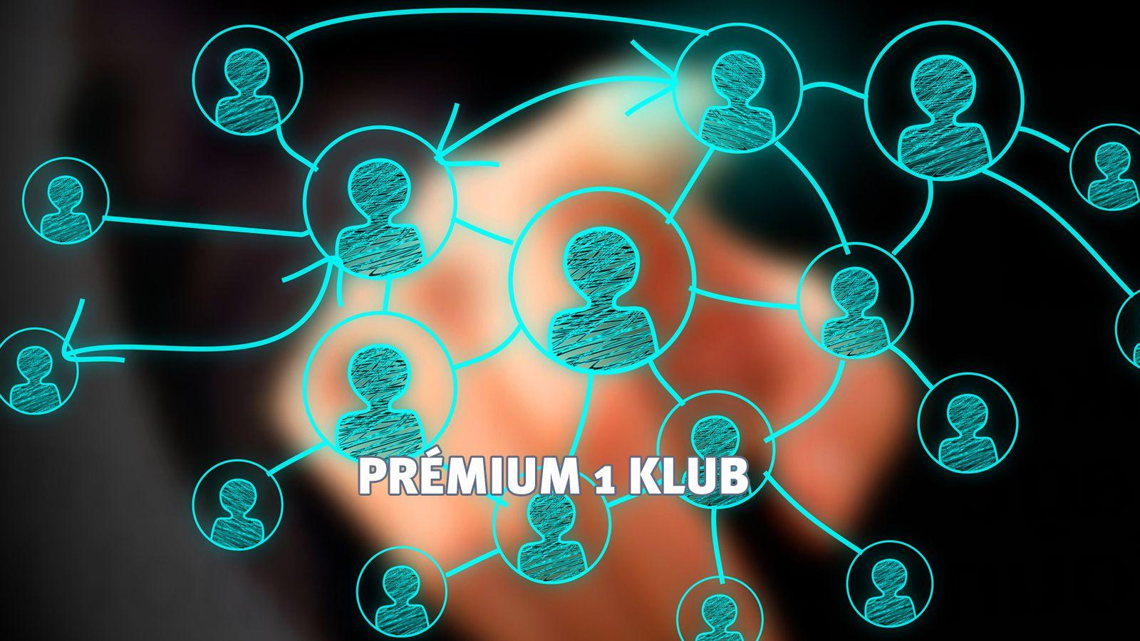Business Flow / networking / kapcsolatépítés / Prémium 1