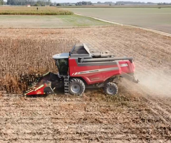 Napraforgó aratás és szárzúzás aprítóhengerrel