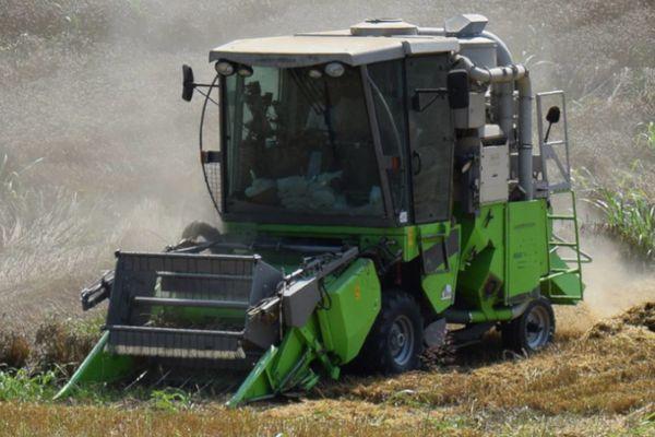 Wintersteiger Delta parcellakombájn: alkalmas parcellánkénti nedvesség és súly mérésére, és mintavételezésre (oldalvágó kaszával ellátott gabonaasztalának köszönhetően különösen alkalmas repcearatásra, de használjuk kukorica és napraf