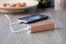 Roblex USB power bank